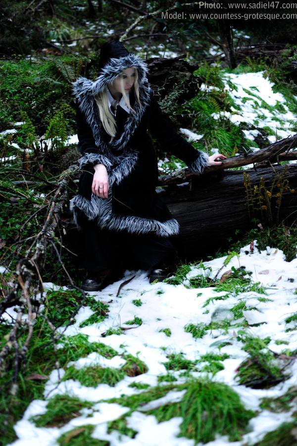 http://fc09.deviantart.net/fs38/i/2008/345/1/b/__my_first_snow___by_Countess_Grotesque.jpg