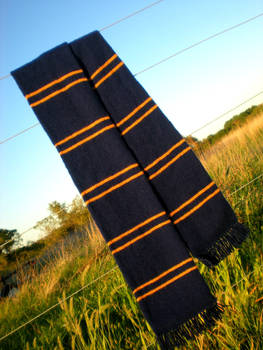 Yet Another Ravenclaw Scarf