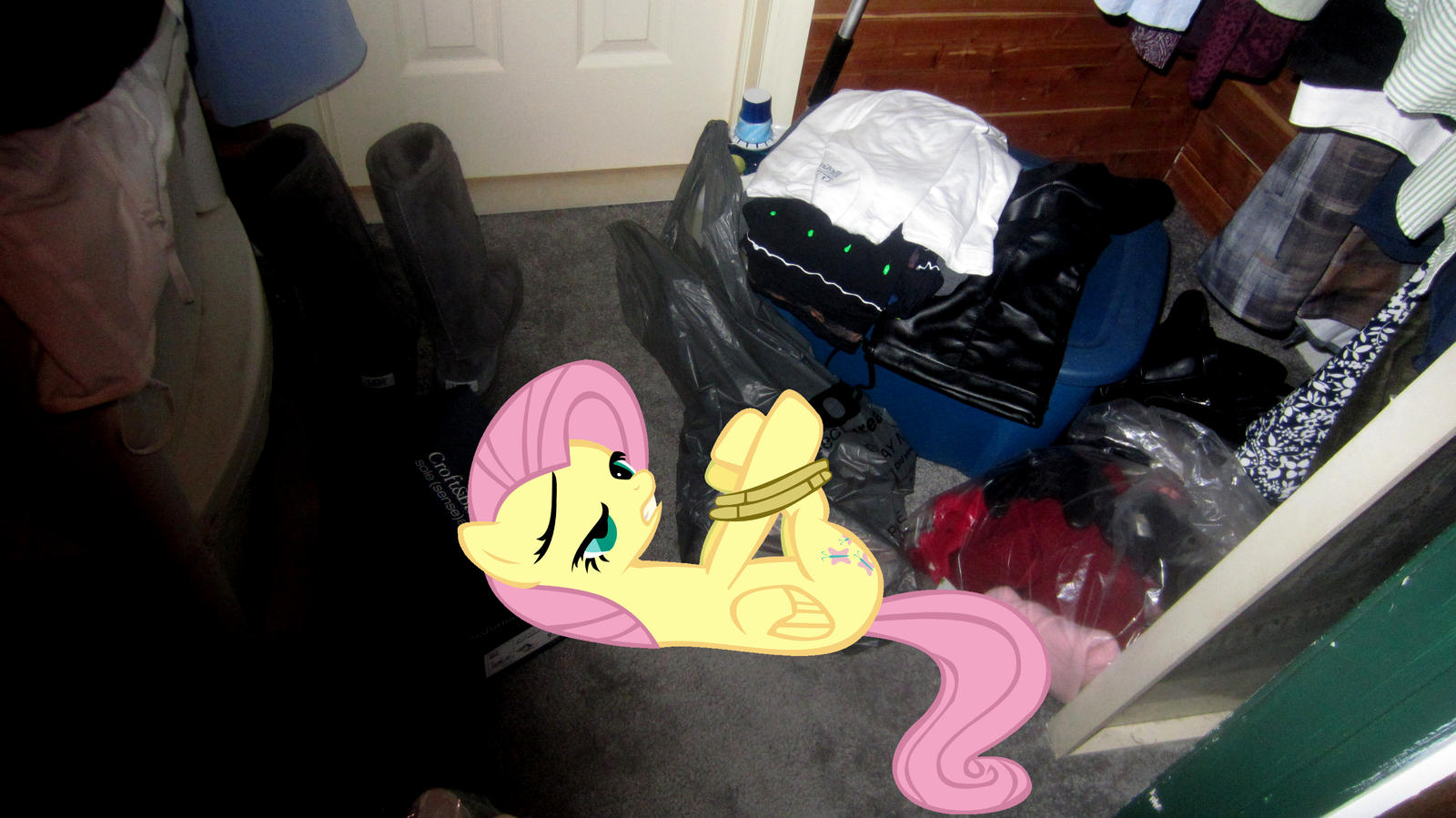 Someone tied and locked Fluttershy in my closet by MetalGriffen69. Someone tied and locked Fluttershy in my closet by MetalGriffen69