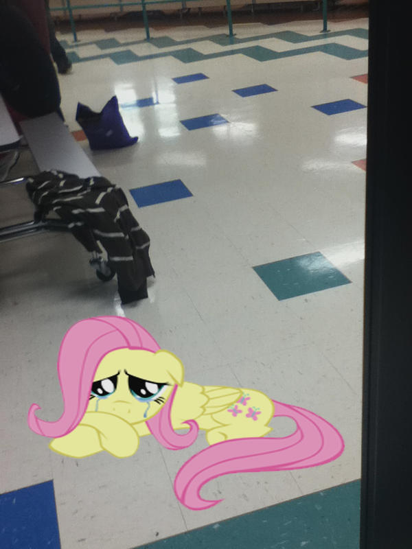 Fluttershy at my school by MetalGriffen69. Fluttershy at my school by MetalGriffen69 on DeviantArt