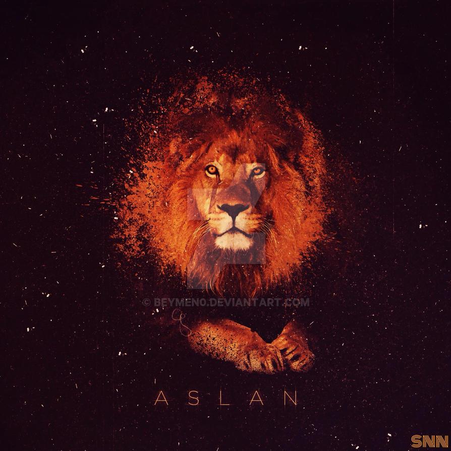 ASLAN by beymen0