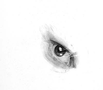 Drawing Jim Carrey step 1 by Per-Svanstrom