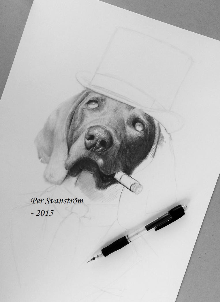 WIP - Dog with cigar step2 by Per-Svanstrom