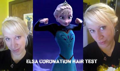 Elsa Coronation Hair by IchigoBunny