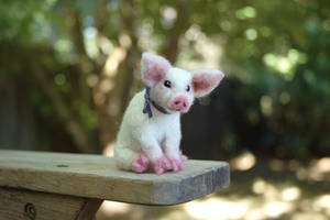 Needle felted Pig piglet by amber-rose-creations