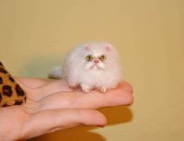 Needle felted Persian cat tiny by amber-rose-creations