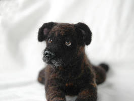 Needle Felted Pit bull Mix dog by amber-rose-creations
