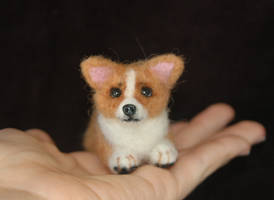 Needle Felted Corgi Puppy by amber-rose-creations