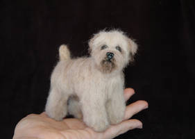 Needle Felted Wheaten Terrier by amber-rose-creations