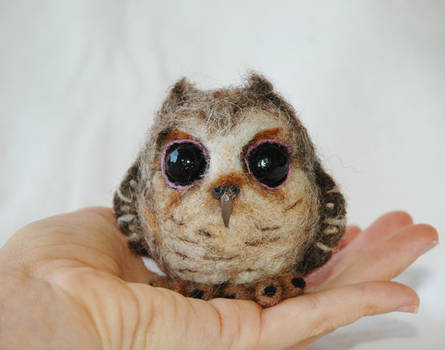 Needle Felted Baby Owl by amber-rose-creations