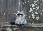 Mini Needle Felted Baby Raccoon