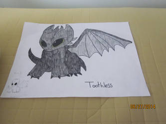 Toothless by Snr1525