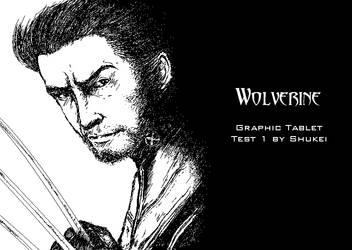 Wolverine by shukei20