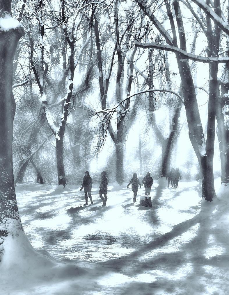 Winter mood by Borymir