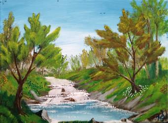015. Bubbling Stream by Draiochta