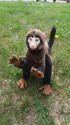 Pablo the Posable Monkey OOAK Artdoll by HedaMiu