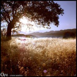 Ojai - Ver 04 by djserby
