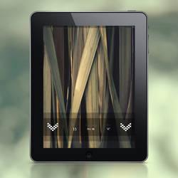 LS Tinted - iPad