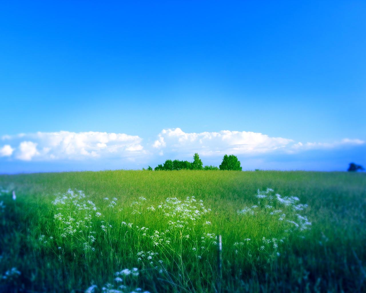 Field Plotter by itsaju