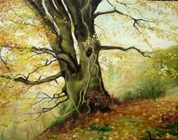 Tree by sorinapostolescu