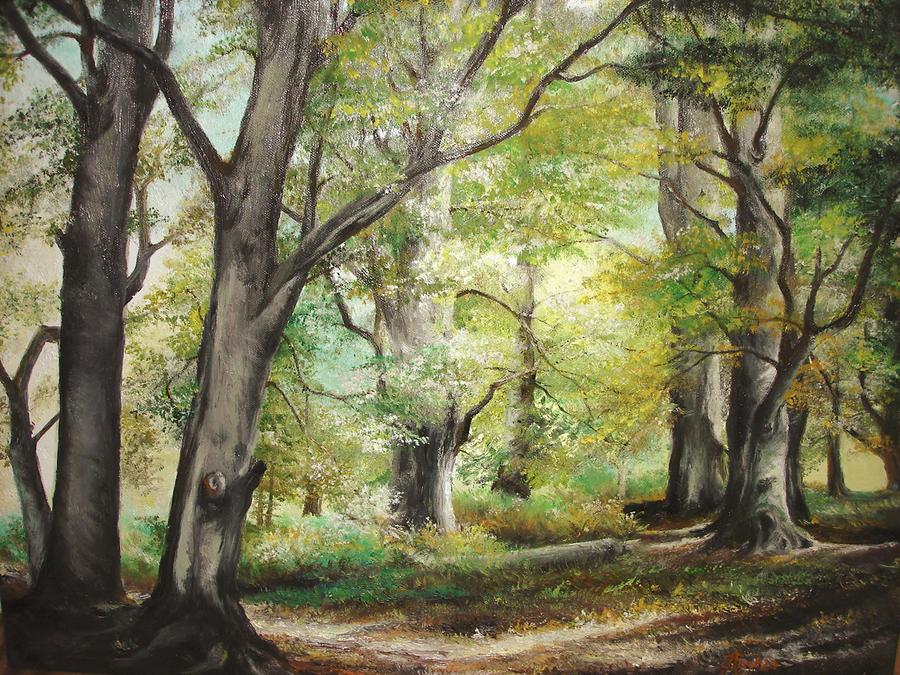 Waldlichtung fernab von konoha The_Clearing_by_sorinapostolescu