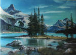Canadian Winter Landscape
