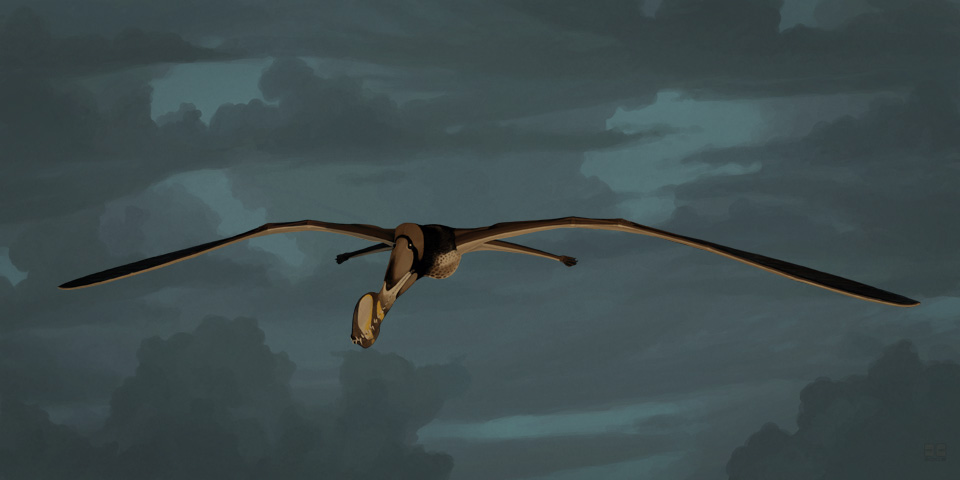 Tropeognathus mesembrinus by jconway