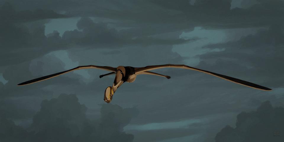 Tropeognathus mesembrinus
