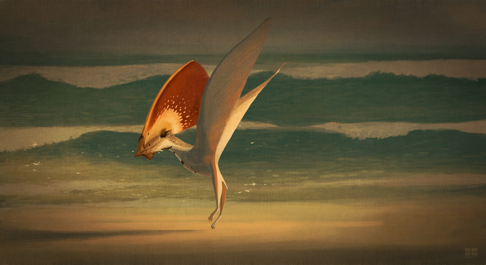 Tupandactylus imperator by jconway