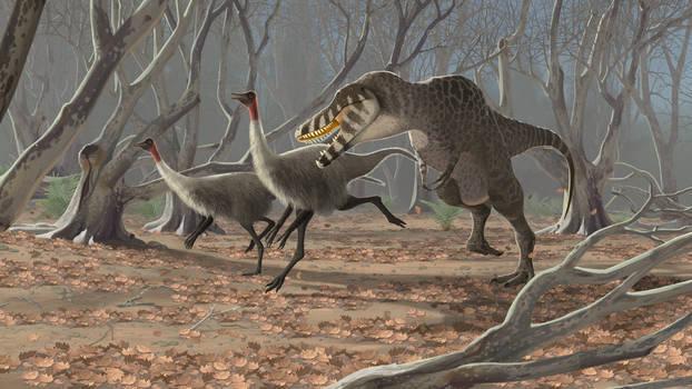 Tarbosaurus and Gallimimus