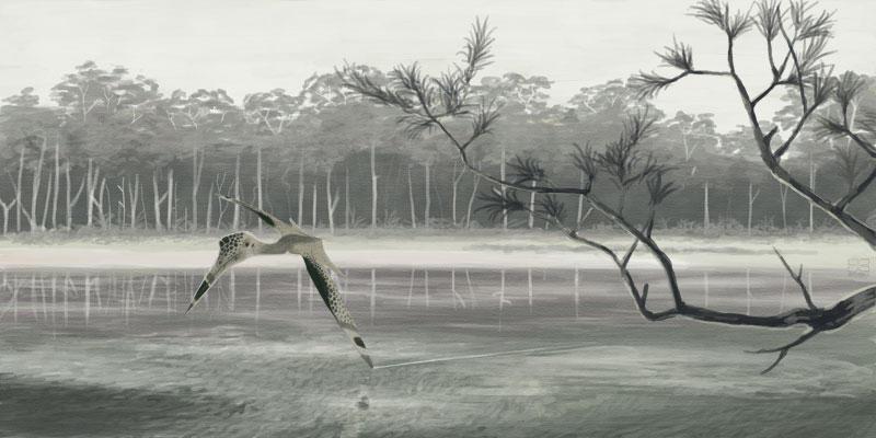 Quetzalcoatlus sp. by jconway