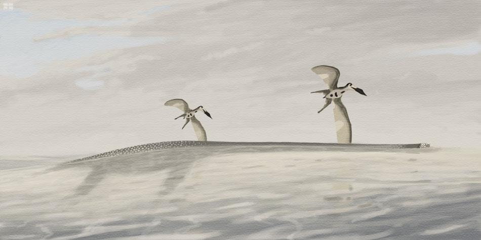 Elasmosaurus and Nyctosaurus by jconway
