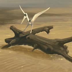 Pterodactylus kochi landing
