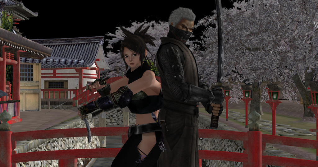 Tenchu Rikimaru And Ayame By Jared789 On Deviantart