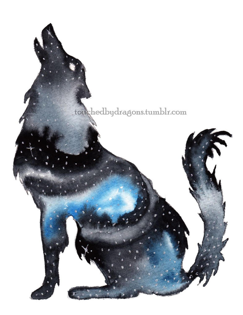 Galaxy Wolf by TouchedbyDragons