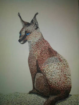 Pointillism Caracal