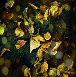 saffron by Keid-89