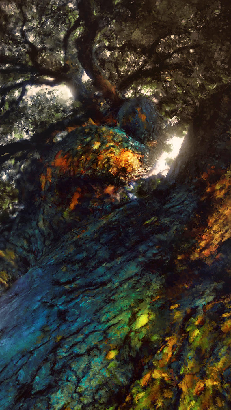 Canyon Live Oak by TavenerScholar