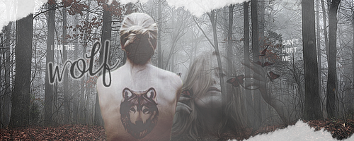 Some kind of madness ~ I_am_the_wolf_by_liscaulfield-d5obnit