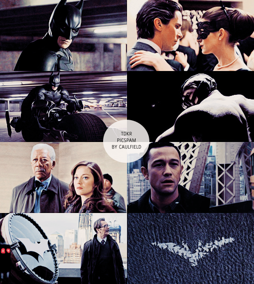 Some kind of madness ~ Tdkr_picspam_by_liscaulfield-d5pr5yy