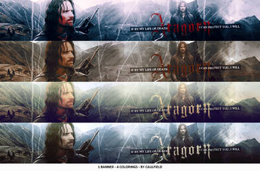 Aragorn banners by LisCaulfield