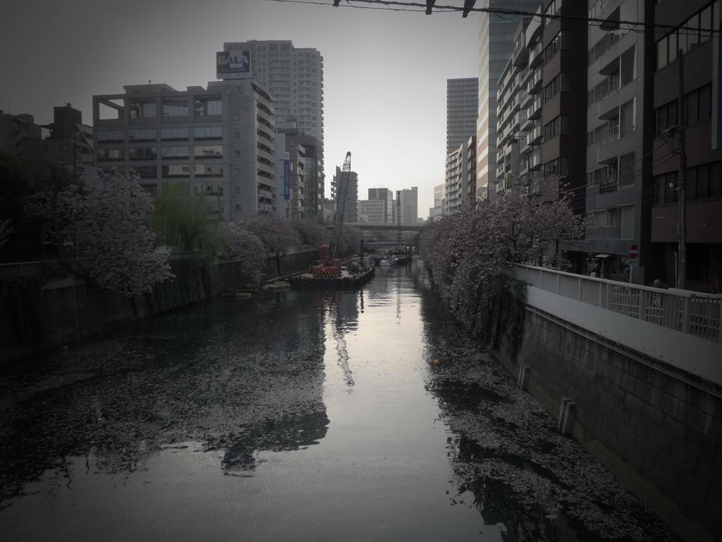 kenshi-refluxed's DeviantArt gallery