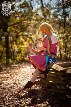 Goddess Harp | Skyward Sword