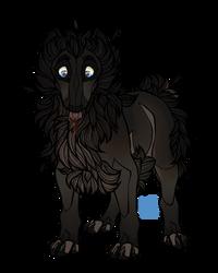 Puppy Aslak