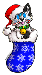 Pup in a stocking by SkyeHighSuits