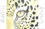 Leopard-Colour