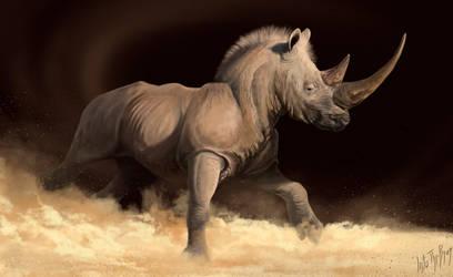 Racing rhinoceros by IntoTheBear