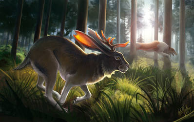 Forest run. Jackalope No.3 by IntoTheBear