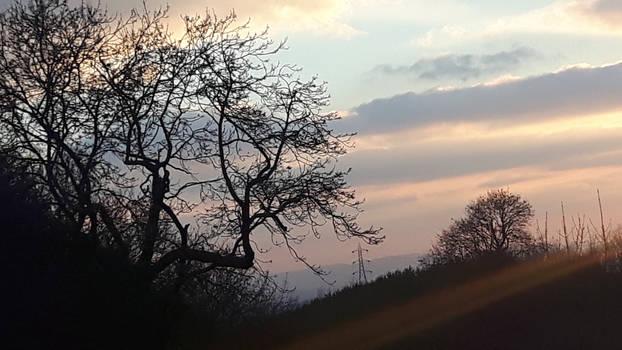 Evening in Brum