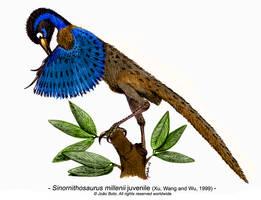 Sinornithosaurus millenii by Sputatrix